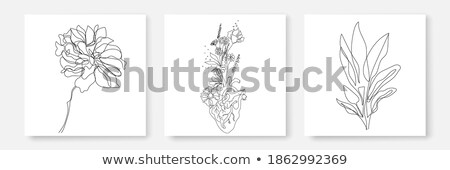 set of hearts with flowers petals eps 10 stock photo © beholdereye
