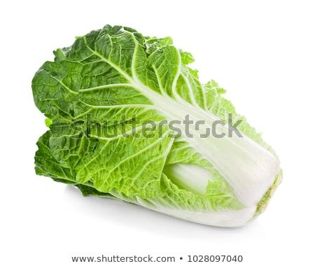 Kínai káposzta fej friss étel saláta Stock fotó © Digifoodstock