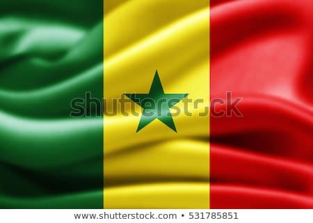 Icon - Flag of Senegal Stock photo © Oakozhan