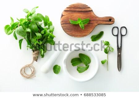 fresh lemon balm in white bowl Stock photo © Digifoodstock