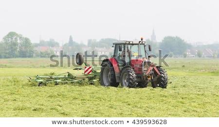 Rolnik ciągnika siano dziedzinie trawy budynków Zdjęcia stock © michaklootwijk