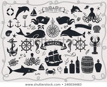 イルカ 魚 実例 クリップアート ベクトル 芸術 ストックフォト © vectorworks51