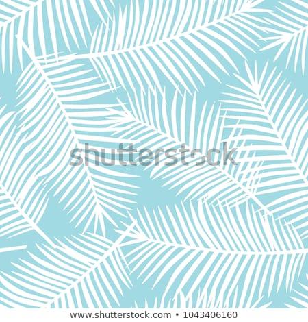 夏 フローラル 装飾 カラフル 花 フレーム ストックフォト © odina222