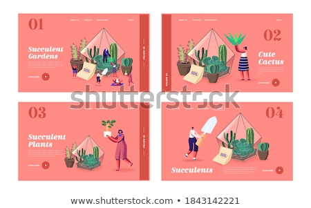 Girl Plants Terrarium Stock photo © lenm