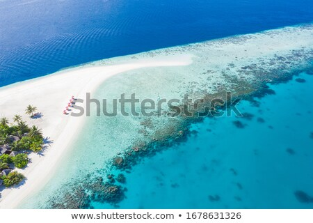 Exotic vacation on Maldives Stock photo © Anna_Om