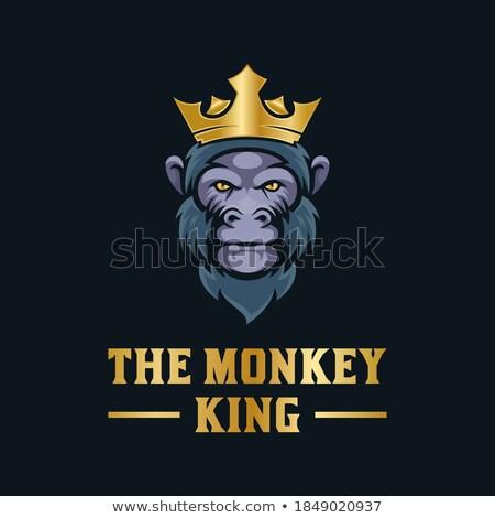 Cartoon enojado príncipe mono mirando Foto stock © cthoman