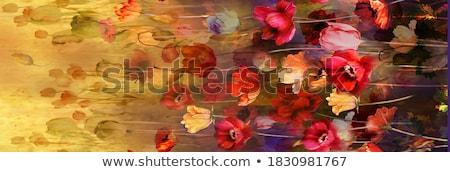 Gyönyörű virágcsokor virágok elképesztő virágok fehér Stock fotó © carenas1