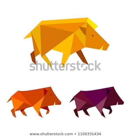 Afiş şablon üç vahşi hayvanlar örnek doğa Stok fotoğraf © colematt
