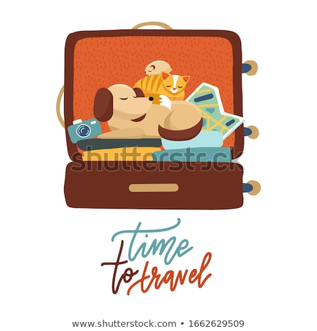 Time to Travel Luggage with Sticker Poster Vector Stock photo © robuart