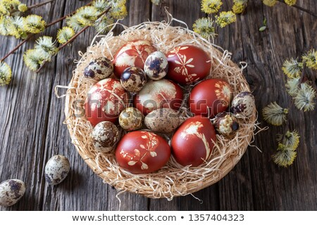 Easter eggs dyed with onion peels and quail eggs in a basket Stock photo © madeleine_steinbach