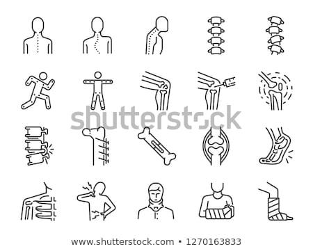 Colonne vertébrale vecteur ligne icônes icône isolé Photo stock © smoki