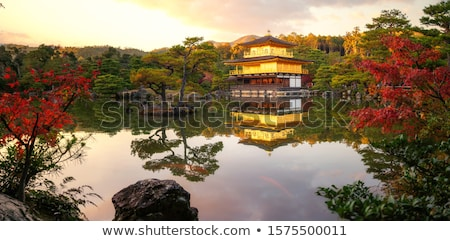 Gebouw tempel kyoto Japan gouden bos Stockfoto © daboost