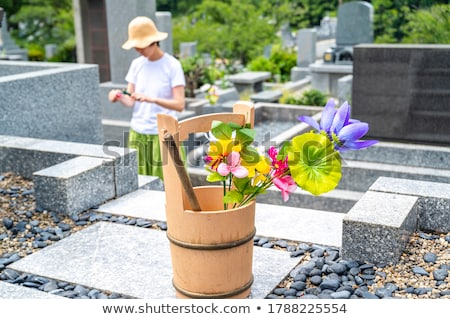 Japonês visitar grave ilustração flor verão Foto stock © Blue_daemon