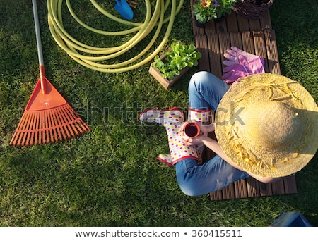 Spring garden. Boots and gardening tools in green grass. Stock photo © mythja