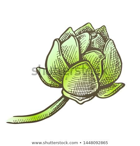 Foto stock: Cor · salto · agricultura · medicina · vetor