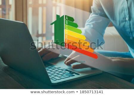 energy efficiency concept stock photo © lightsource