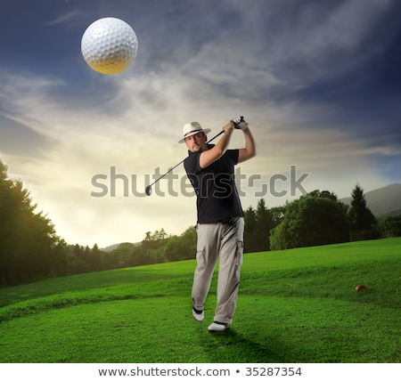 Successful golf player on green. Stock photo © lichtmeister
