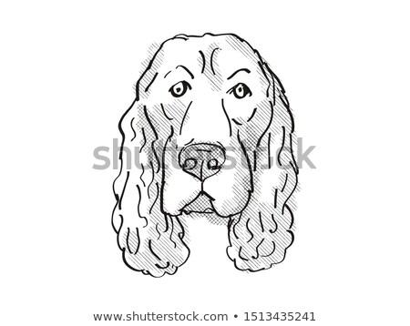 Alan karikatür Retro çizim stil Stok fotoğraf © patrimonio