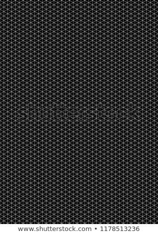 Bianco isometrica griglia nero dimensioni verticale Foto d'archivio © evgeny89