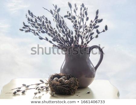 süslemeleri · Paskalya · renkli · taze · çiçekler · iyi · paskalyalar - stok fotoğraf © phbcz