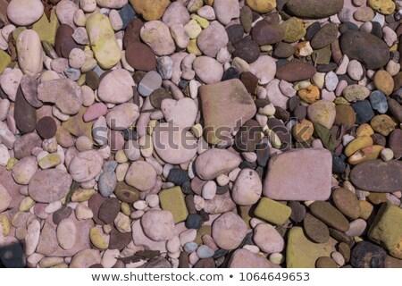 landscaping · rock - stockfoto © brebca