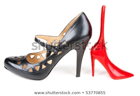 Red feminine shoe, shoehorn Stock photo © RuslanOmega