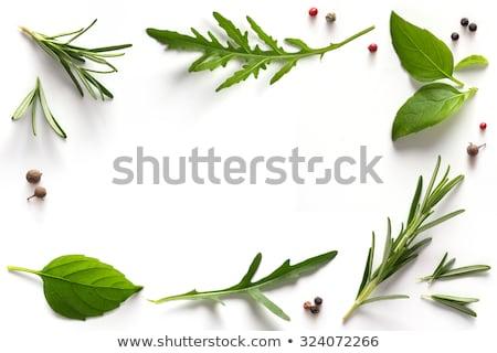 Mediterranean herbs Stock photo © pumujcl