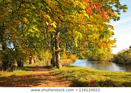 Beatiful lake in Autumn time, Scotland, UK Stock photo © Julietphotography