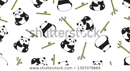 Panda with bamboo Stock photo © samsem