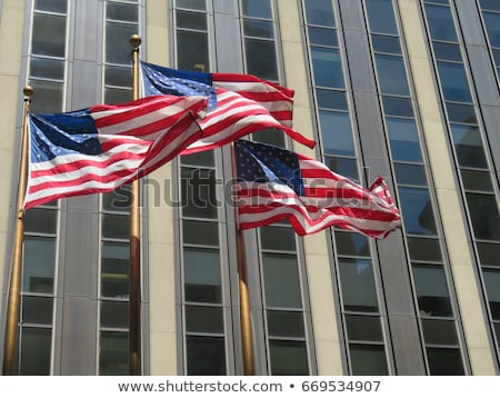 Flag Flying In Front of Government Building Stock photo © HdcPhoto