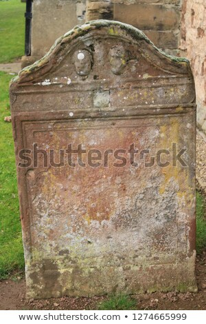 Skeleton with Blank Gravestone Stock photo © AlienCat