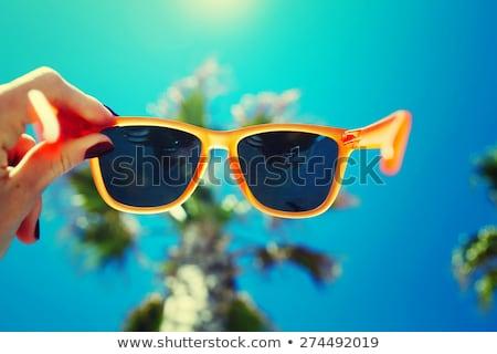 palmiye · yaprağı · mavi · gökyüzü · gökyüzü · orman · doğa · arka · plan - stok fotoğraf © moses