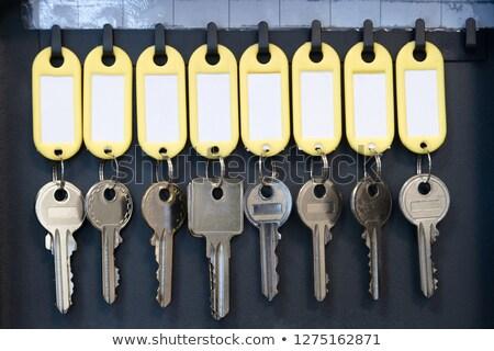 zielone · kluczowych · tag · srebrny · biały · działalności - zdjęcia stock © inxti