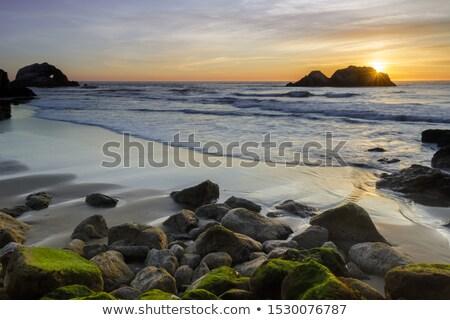 Point Lobos Seal Rocks San Francisco California Stock photo © billperry