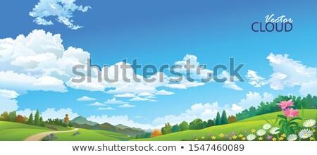небе области Blue Sky небольшой пушистый облака Сток-фото © tainasohlman