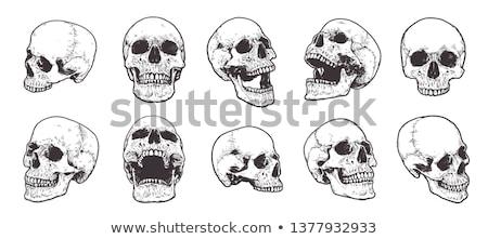 Gravé humaine crâne vintage métal Photo stock © Concluserat