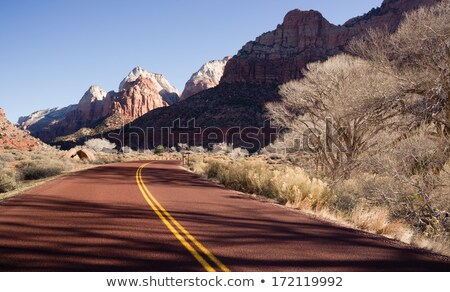 Road Sunrise High Mountain Buttes Zion National Park Desert Sout Stock photo © cboswell