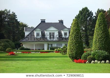 Villa maison urbaine statue luxe anciens Photo stock © meinzahn