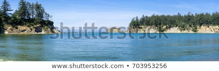 Egyenetlen tengerpart Oregon part víz háttér Stock fotó © Frankljr