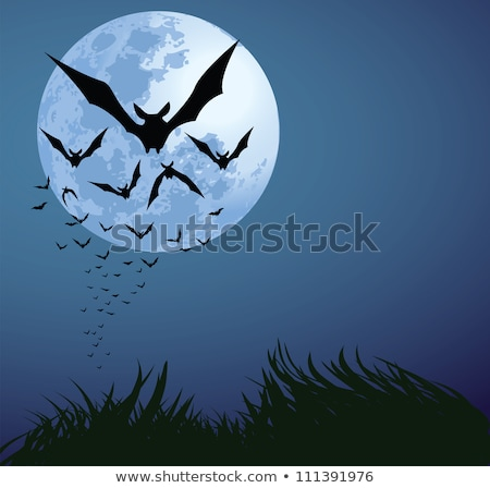 Bats Flying Full Moon Stock photo © cteconsulting