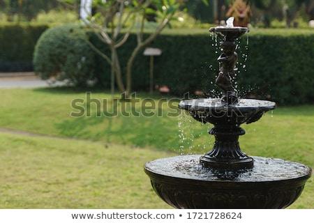 Vintage fontana giardino stock foto acqua Foto d'archivio © nalinratphi