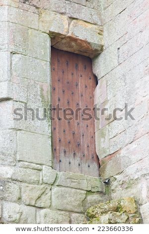 Details of an forgotten old Scottish Abbey Stock photo © michaklootwijk