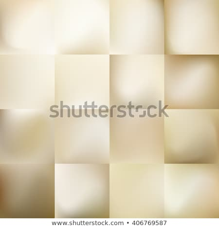 Shaded empty vector cards set on pastel background Stock photo © slunicko