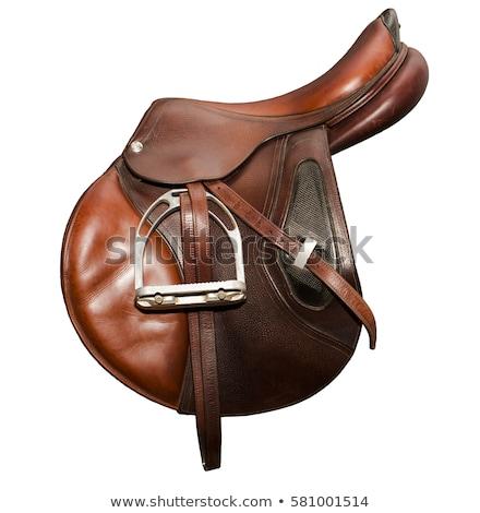 Paard zadel illustratie glimlach natuur dier Stockfoto © adrenalina