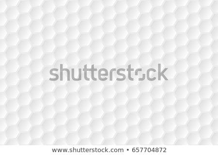 Golf background Stock photo © netkov1