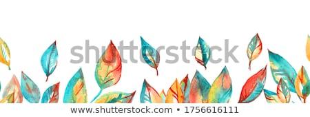 autumn leaves seamless background stock photo © voysla