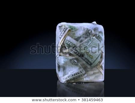 Fagyott nyereség költségvetés fagy üzlet pénzügyi Stock fotó © Lightsource