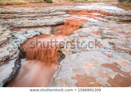 峡谷 · 夏 · 嵐 · 木 · 旅行 · 岩 - ストックフォト © emattil