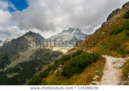 Widoku góry turystyka szlak Polska Europie Zdjęcia stock © Mariusz_Prusaczyk