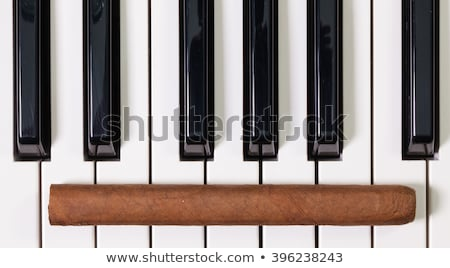 Piyano klavye lüks puro detay sanat Stok fotoğraf © CaptureLight